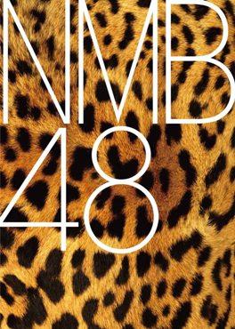 http://static.tvtropes.org/pmwiki/pub/images/0208nmb48_logo_1382.jpg