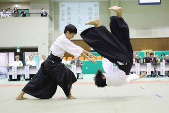 https://static.tvtropes.org/pmwiki/pub/images/032_2017_10hag26001_haga_small_data_r_japanese_aikido.jpg