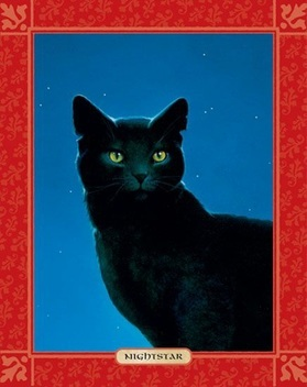Warrior Cats Blossomkit Warrior Cats ShadowCla...