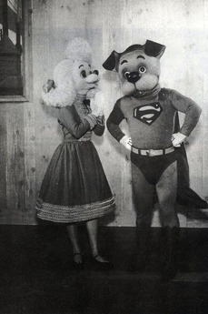 http://static.tvtropes.org/pmwiki/pub/images/119532_the_adventures_of_super_pup_0_230_0_345_crop.jpg