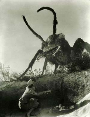 Damn good Movie insect world domination esta mamasita!