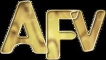 http://static.tvtropes.org/pmwiki/pub/images/220px-afhv_alternate_logo_afv_1360.png