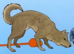 http://static.tvtropes.org/pmwiki/pub/images/260px-Dog_5359.jpg