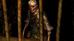 https://static.tvtropes.org/pmwiki/pub/images/300px-undead_female_merchant_1042.jpg