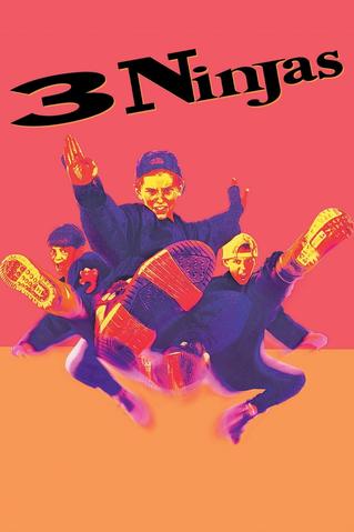 https://static.tvtropes.org/pmwiki/pub/images/3_ninjas.png
