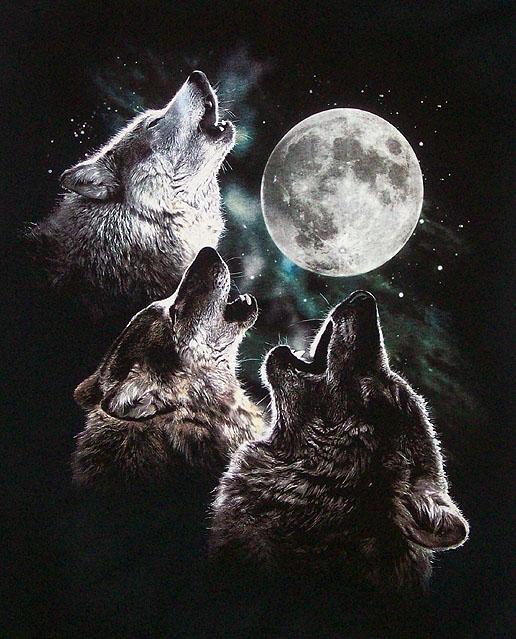 https://static.tvtropes.org/pmwiki/pub/images/3wolfmoon_7785.jpg