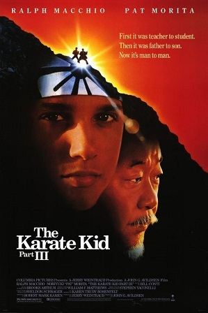 Karate Kid Tvtropes
