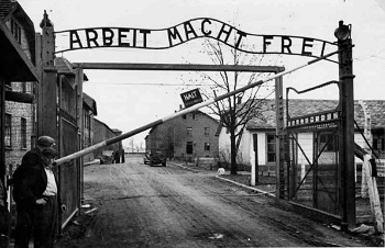 the holocaust useful notes tv tropes