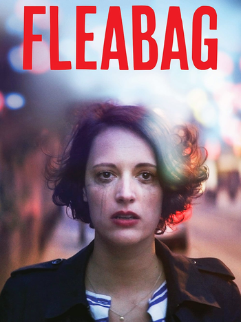 Image result for Fleabag series