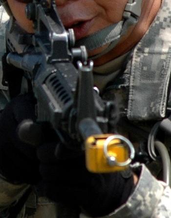 https://static.tvtropes.org/pmwiki/pub/images/Army_mil-2007-09-24-164542_5497.jpg