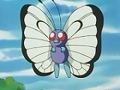 https://static.tvtropes.org/pmwiki/pub/images/Ash_Butterfree_6340.png