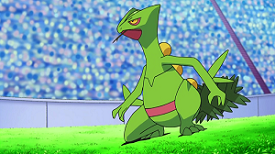 Pokémon - Advanced Generation Pokémon / Characters - TV Tropes