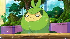 https://static.tvtropes.org/pmwiki/pub/images/Ash_Swadloon_996.png