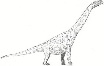 http://static.tvtropes.org/pmwiki/pub/images/Brachiosaurus_-_copia_4555.png