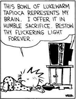 https://static.tvtropes.org/pmwiki/pub/images/Calvin-worship-TV_3852.jpg