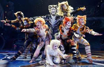 Cats Theatre Tv Tropes