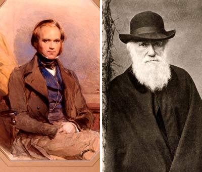 https://static.tvtropes.org/pmwiki/pub/images/Darwin_Review.2.jpg