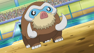 https://static.tvtropes.org/pmwiki/pub/images/Dawn_Mamoswine_8039.png
