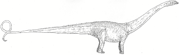 https://static.tvtropes.org/pmwiki/pub/images/Diplodocus_-_copia_5265.png