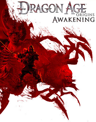 http://static.tvtropes.org/pmwiki/pub/images/Dragon_Age_Origins_Awakening_628.jpg