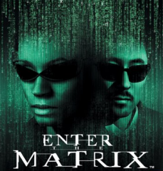http://static.tvtropes.org/pmwiki/pub/images/Enter-The-Matrix-001_9706.png