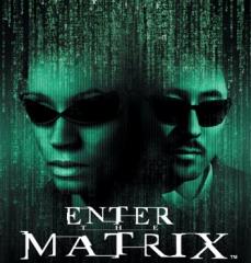https://static.tvtropes.org/pmwiki/pub/images/Enter-The-Matrix-001_9706.png