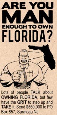 https://static.tvtropes.org/pmwiki/pub/images/FLORIDA_4899.png