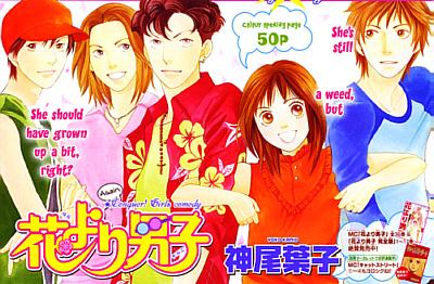 Boys over Flowers (Manga) - TV Tropes