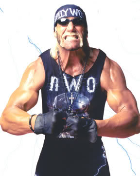http://static.tvtropes.org/pmwiki/pub/images/HollywoodHogan002_15.jpg