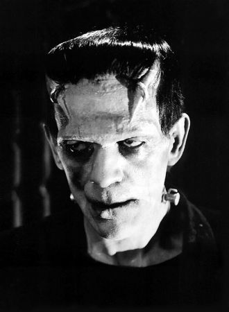 """the question on the science of cloning in frankenstein a novel by mary shelley """"frankenstein"""" in mary shelley's classic crucial questions about ethical issues and conflicts in the novel frankenstein and in modern science 1."""