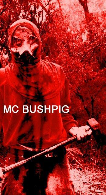 http://static.tvtropes.org/pmwiki/pub/images/MC_Bushpig_1_9655.jpg