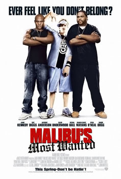 http://static.tvtropes.org/pmwiki/pub/images/Malibus_most_wanted_film_poster_4012.jpg