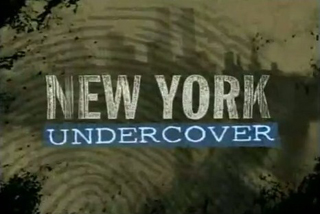 http://static.tvtropes.org/pmwiki/pub/images/New_York_Undercover_intertitle_5087.jpg