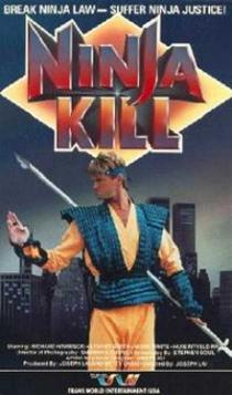 https://static.tvtropes.org/pmwiki/pub/images/Ninja-killv2_2656.JPG