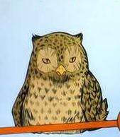 http://static.tvtropes.org/pmwiki/pub/images/Owl2_2889.jpg