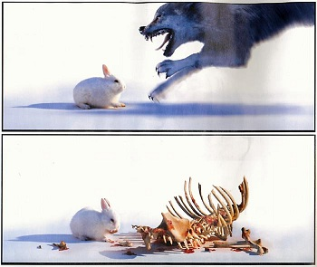 http://static.tvtropes.org/pmwiki/pub/images/Rabbit_Killer_Small_5885.jpg
