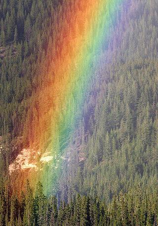 https://static.tvtropes.org/pmwiki/pub/images/Rainbow.JPG