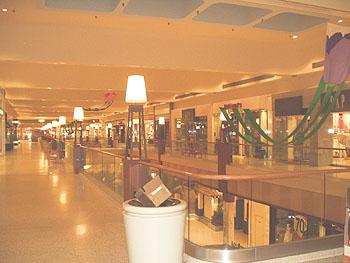 https://static.tvtropes.org/pmwiki/pub/images/Shopping_mall_5162.jpg