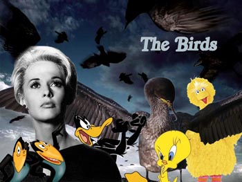 https://static.tvtropes.org/pmwiki/pub/images/The-Birds-Movie-with-Cartoon-Birds-63715_copy_6529.jpg