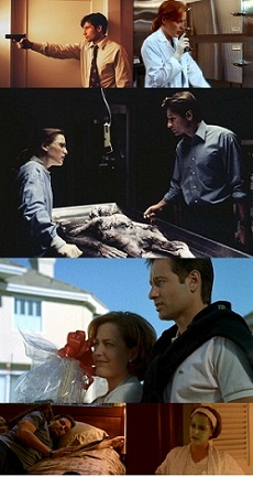 https://static.tvtropes.org/pmwiki/pub/images/Undercover_as_lovers_Mulder_Scully_4images_230_3274.jpg