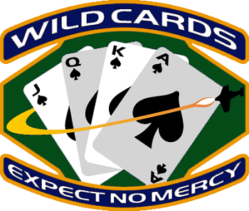 https://static.tvtropes.org/pmwiki/pub/images/Wildcards_5889.png