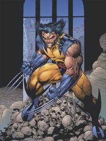 http://static.tvtropes.org/pmwiki/pub/images/WolverineLeeLitho.jpg