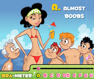 https://static.tvtropes.org/pmwiki/pub/images/a-cup_bra-meter_2971.png