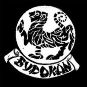 https://static.tvtropes.org/pmwiki/pub/images/academia_budokan.PNG