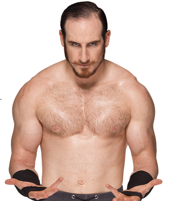 http://static.tvtropes.org/pmwiki/pub/images/aiden_english.png
