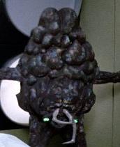 https://static.tvtropes.org/pmwiki/pub/images/alien_braco_i.png