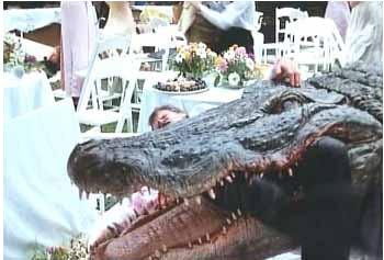 https://static.tvtropes.org/pmwiki/pub/images/alligator_wedding_2474.jpg