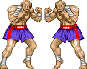 http://static.tvtropes.org/pmwiki/pub/images/ambidextrous-sprite_streetfighter2_6766.png