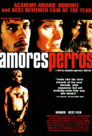 http://static.tvtropes.org/pmwiki/pub/images/amores-perros_3484.jpg