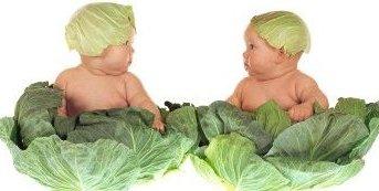 https://static.tvtropes.org/pmwiki/pub/images/anne-geddes-cabbage-kids_5689.jpg